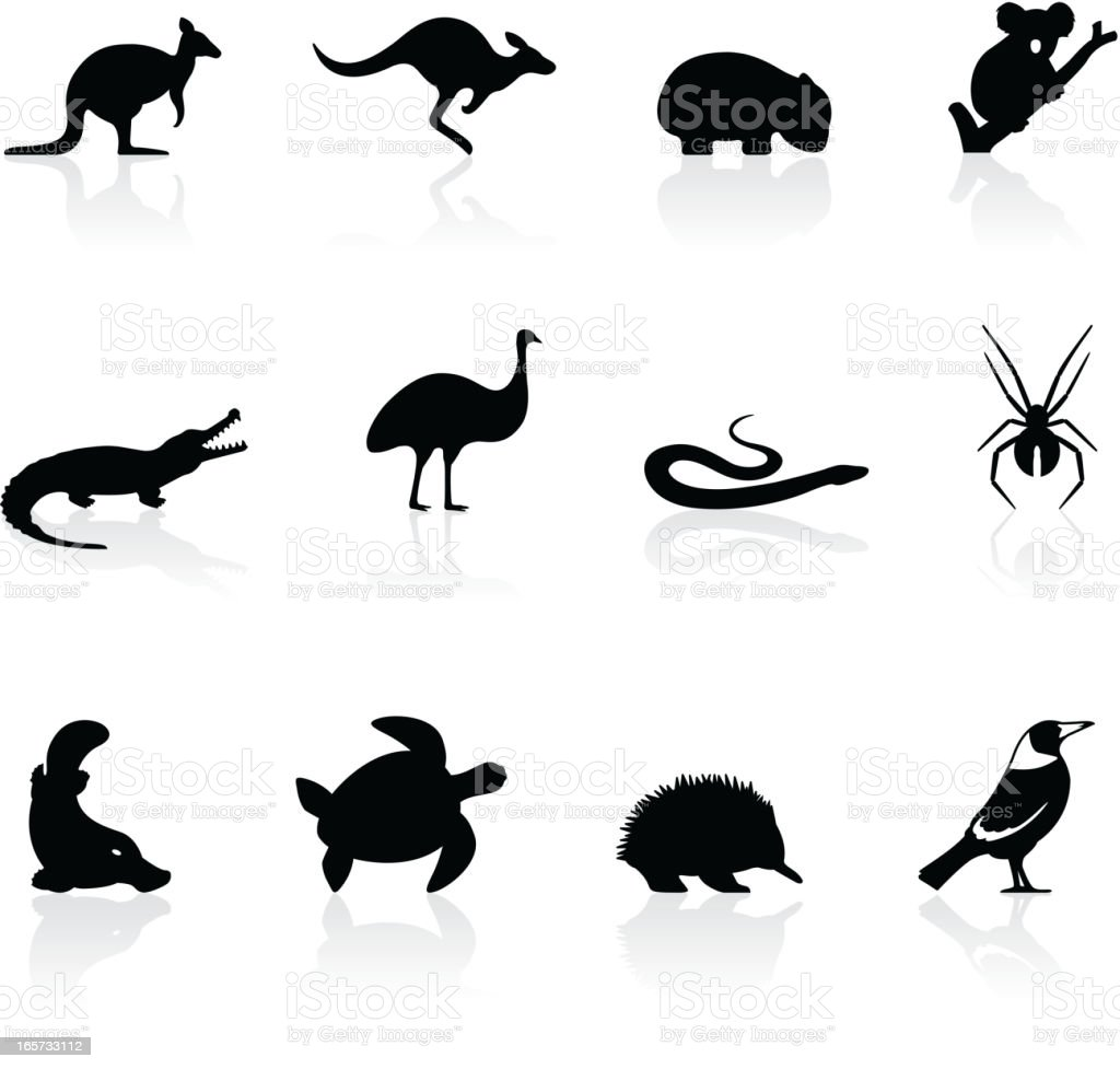 Australian animal icons vector art illustration