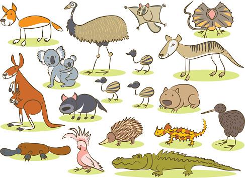 Australian animal kids drawing