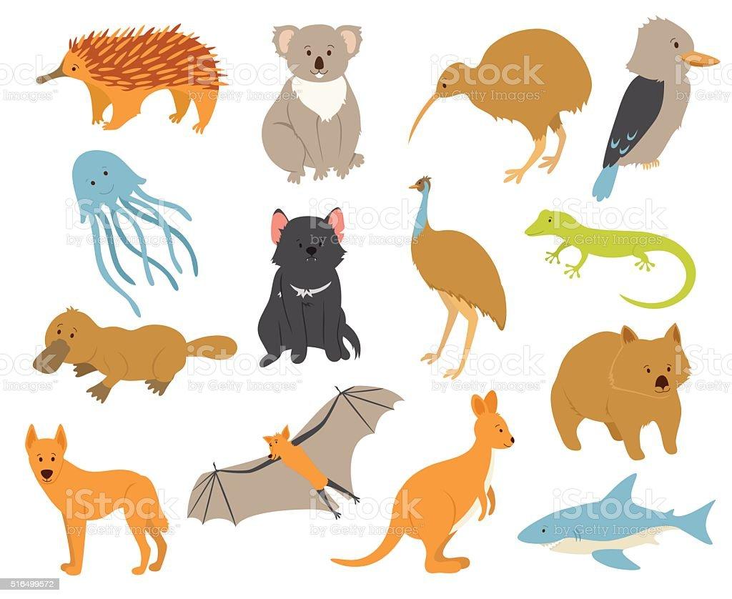 動物 オーストラリア