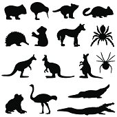 Australian animals in silhouette including a wombat, kiwi, tasmanian devil, possum,echidna,koala bear, dingo, spider, tarantula, kangaroo.