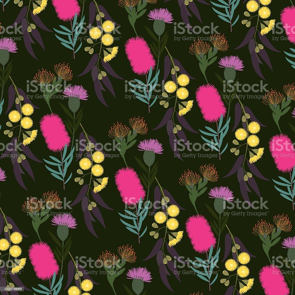 australian flora vector art illustration