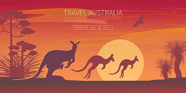 stockillustraties, clipart, cartoons en iconen met australian landscape  poster - bush