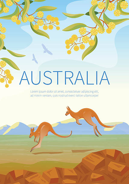 Australian landscape  poster with two Kangaroos. Australian landscape  poster with two Kangaroos.  Every  element is located on a separate layer. Images is cropped with Clipping Mask. Easy to edit kangaroo stock illustrations