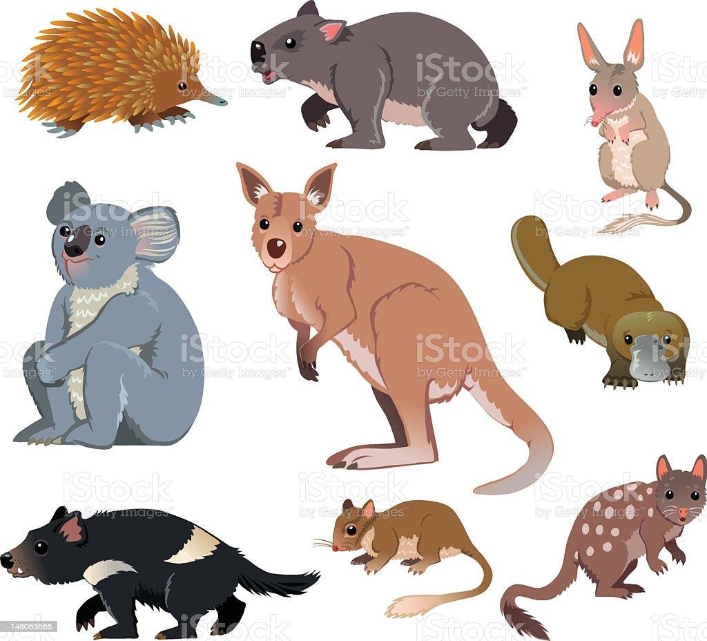 Australian Wild Animals - Cartoon royalty-free stock vector art