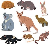 Australian Wild Animals - Cartoon