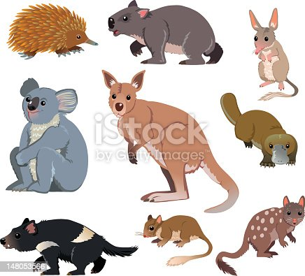 Australian Wild Animals Cartoon Stock Vector Art Amp More