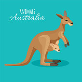 Austrastralia kangaroo animal mother with child in pocket on blue