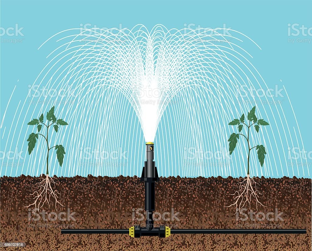 Automatic irrigation sprinklers royalty-free automatic irrigation sprinklers stock vector art & more images of agriculture