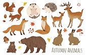 Autumn animal illustration set