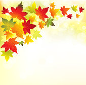 Vector illustration autumn background. EPS10. Contains transparency.