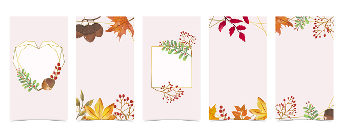 Autumn background for social media.Set of instagram story with maple,leaf