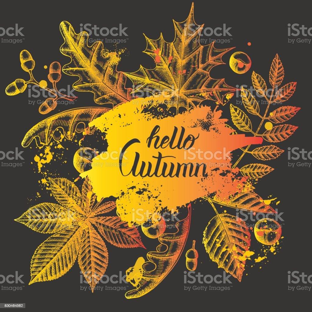 Autumn Background On Black. Hand Written Brush Trendy Quote U0027Hello Autumn  Timeu0027.