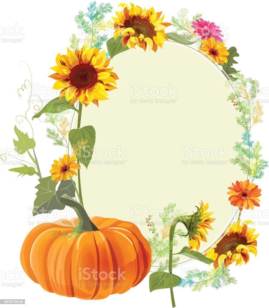 Herbst Hintergrund Orange Kürbis Gelbe Sonnenblumen Gerbera Daisy ...