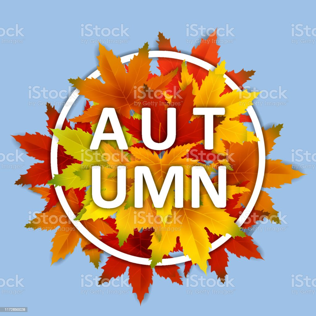 Autumn Background Template With Falling Bunch Of Leaves