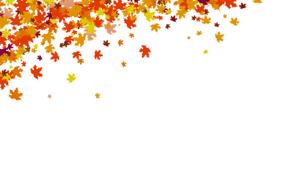 Autumn background, thanksgiving concept, maple leaves scatter cluster in nature vector illustration Autumn background, thanksgiving concept, maple leaves scatter cluster in nature vector illustration exodus stock illustrations
