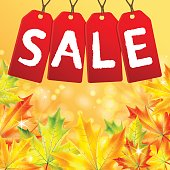 Announcement of sale of the autumn on a background of yellow maple leaves.autumn background.vector