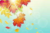 Autumn background with autumn fall leafs, blue sky and bright sun. Vector illustration
