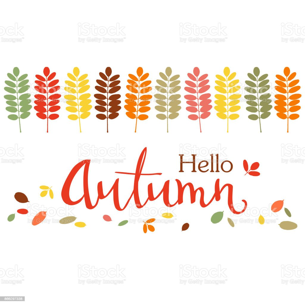 Autumn background with colorful acacia leaves border and handwritten lettering. Vector illustration. vector art illustration
