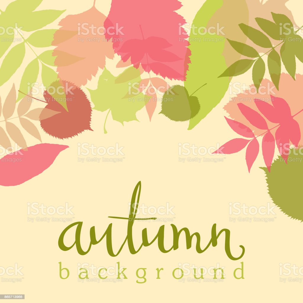 Autumn background with colorful leaves and handwritten lettering. Vector illustration. vector art illustration