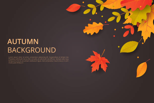 Autumn background with leaves. Can be used for poster, banner, flyer, invitation, website or greeting card. Vector illustration Autumn background with leaves. Can be used for poster, banner, flyer, invitation, website or greeting card. Vector illustration fall stock illustrations