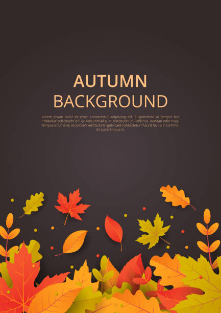 autumn background with leaves. can be used for poster, banner, flyer, invitation, website or greeting card. vector illustration - autumn stock illustrations