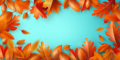 Autumn Background,Poster and banner template with colorful maple and oak autumn leaves.Greetings and presents for Autumn and fall season concept.Vector illustration background. and shopping template.