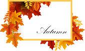 autumn leaves sale banner