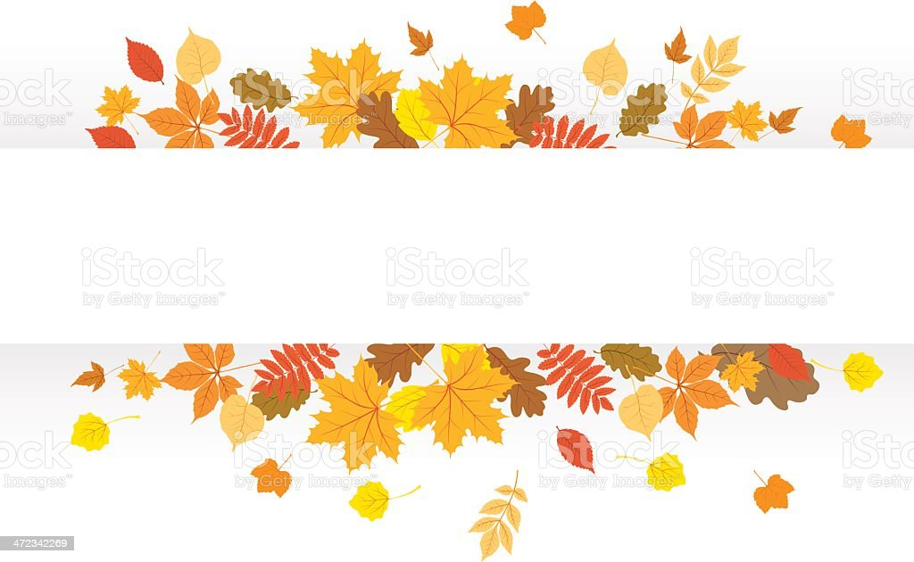 Autumn Banner Stock Vector Art & More Images of Ash Tree ...