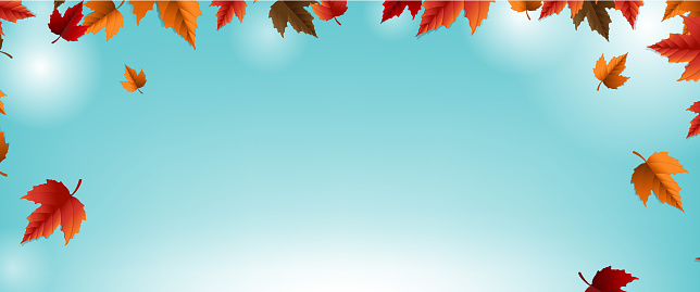 Autumn Banner With Colorful Leaf Blur Background