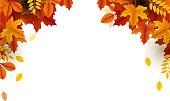 autumn season template design copy space