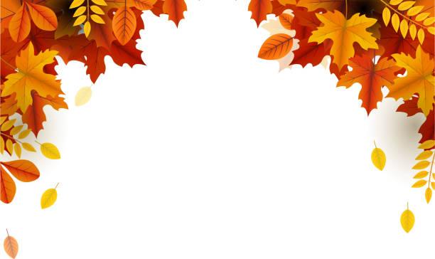 autumn beauty falling leaves frame autumn season template design copy space fall leaves stock illustrations