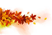 autumn leaves design element