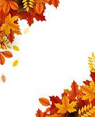 autumn beauty template corner design