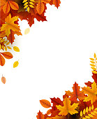 autumn beauty template corner design