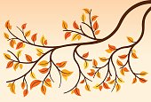 Autumn branch tree leaves.