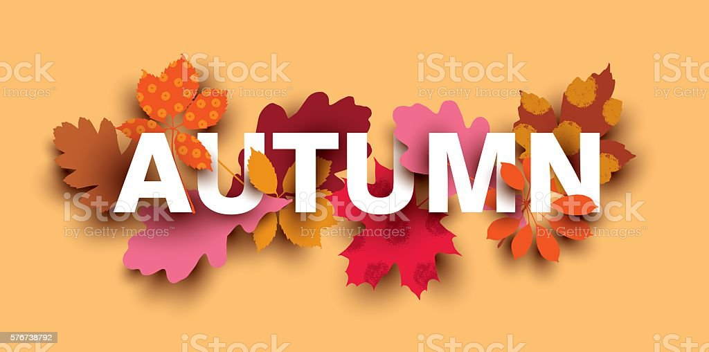 Autumn card with different plant elements. vector art illustration