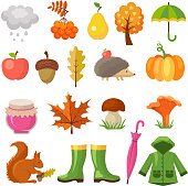 Autumn colored symbols. Vector icon set of autumn. Plant and mushroom, squirrel and hedgehog illustration