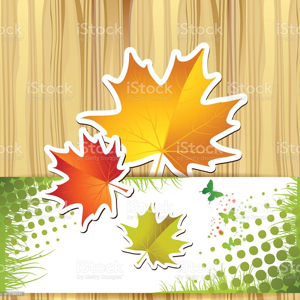 Autumn colorful leaves royalty-free stock vector art