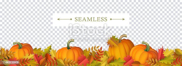 Autumn decorative border seamless pattern with colorful tree leaves and ripe orange pumpkins on transparent background - seasonal fall frame for greeting or promotion in cartoon vector illustration.