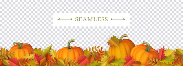 Autumn decorative border seamless pattern with colorful tree leaves and ripe orange pumpkins. Autumn decorative border seamless pattern with colorful tree leaves and ripe orange pumpkins on transparent background - seasonal fall frame for greeting or promotion in cartoon vector illustration. pumpkin stock illustrations