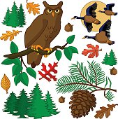 autumn design elements with owl and flying geese