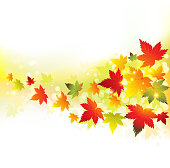 Vector illustration autumn background. EPS10. Used transparent effect.
