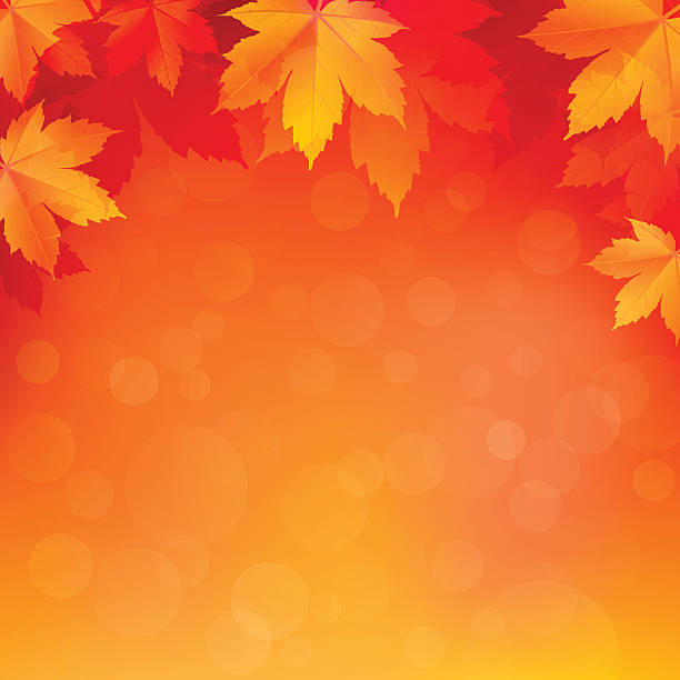 Autumn, fall background with bright golden maple leaves Autumn, fall background with bright golden maple leaves. Abstract illustration with bokeh lights. Blurred soft backdrop. Vector illustration. EPS10 fall background stock illustrations
