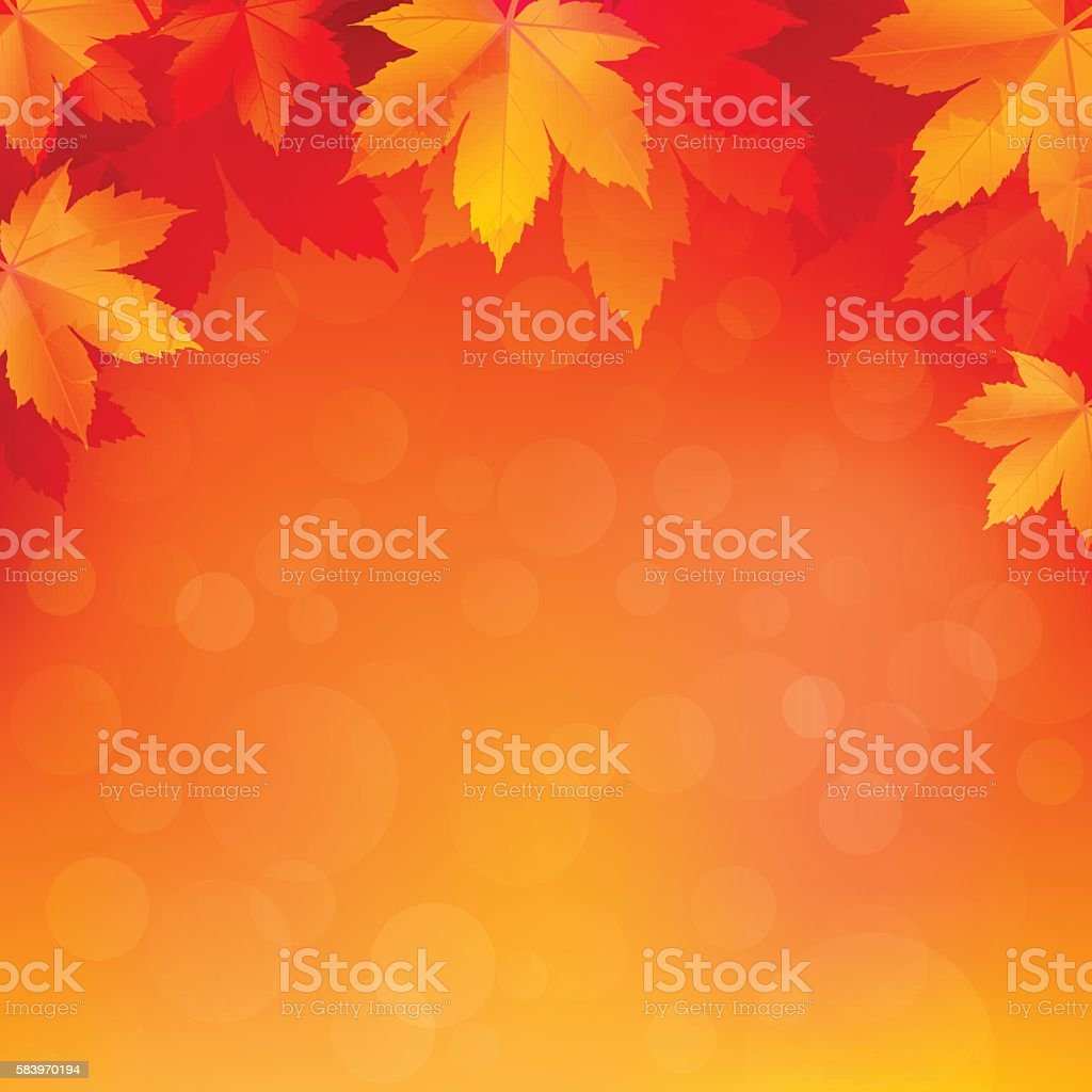 Autumn, fall background with bright golden maple leaves - illustrazione arte vettoriale