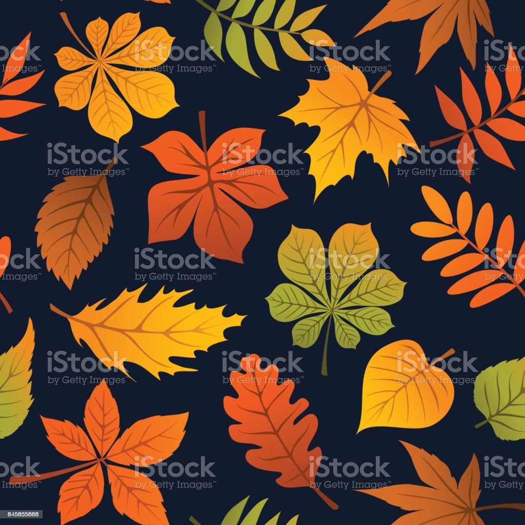 autumn fall leaves seamless pattern vector art illustration