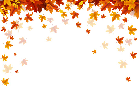 autumn leaves falling copy space background
