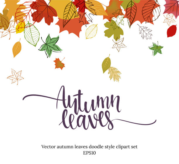 Autumn falling leaves design Autumn design. Vector illustration Autumn falling leaves doodle style. Templates for placards, banners, flyers, presentations, reports. fall background stock illustrations