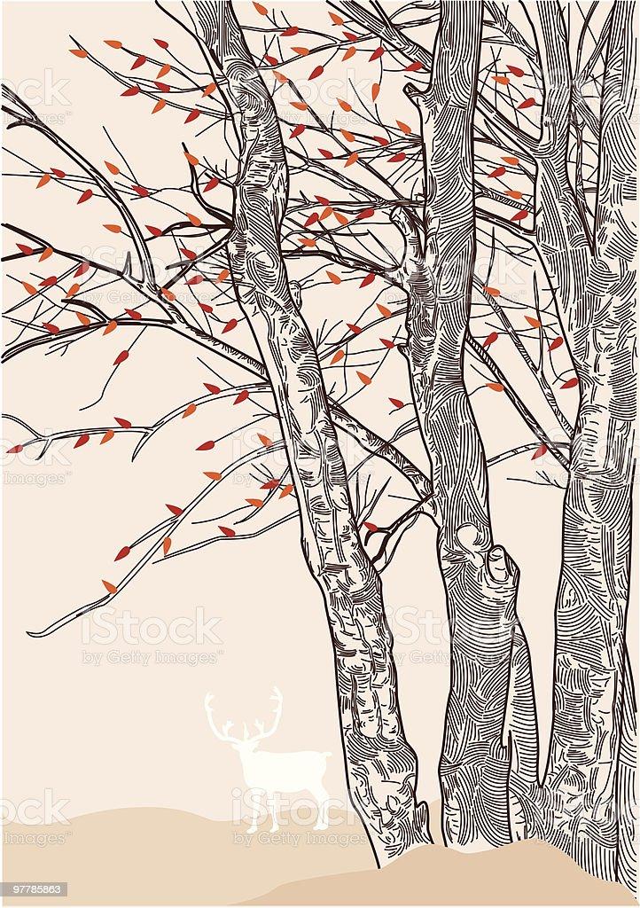 Autumn Falls vector art illustration