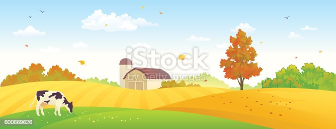 Vector illustration of an autumn farm banner with wheat fields and a grazing cow.