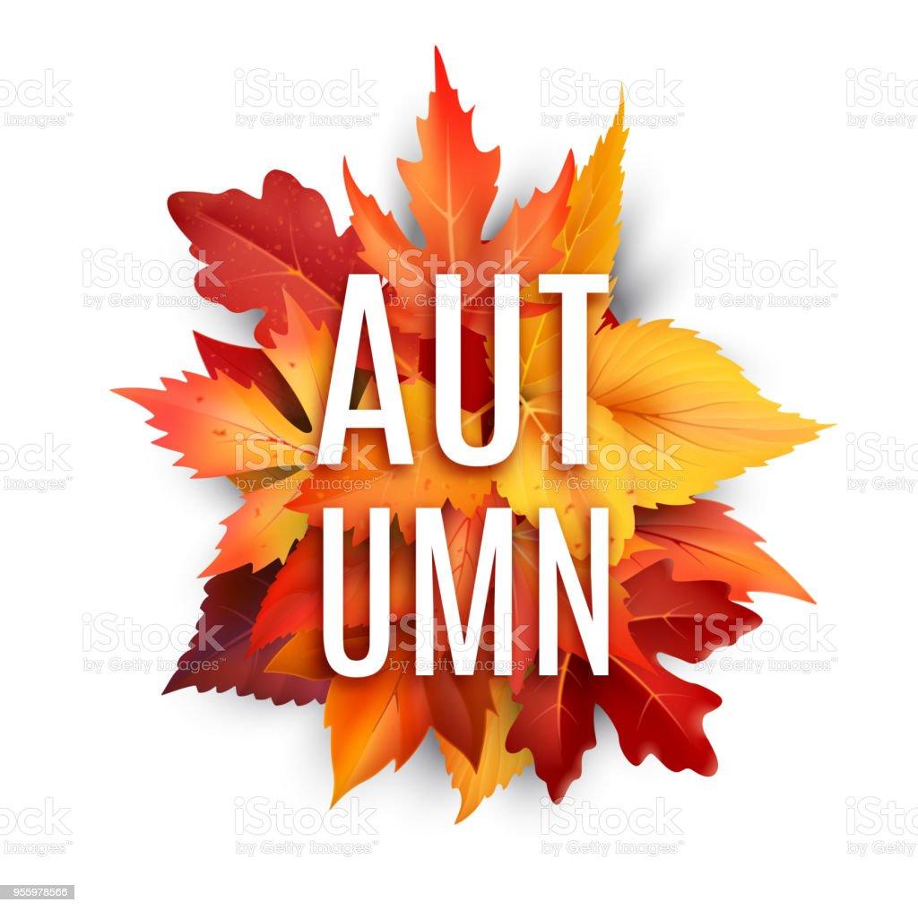 Im Herbst Laub Blatt Vektor Poster Von Herbstlaub Stock Vektor Art ...